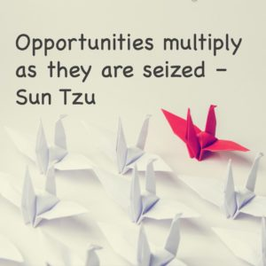 Opportunities multiple as they are seized